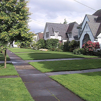 photo of a sidewalk in front of houses